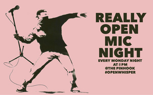 Really Open Mic Night